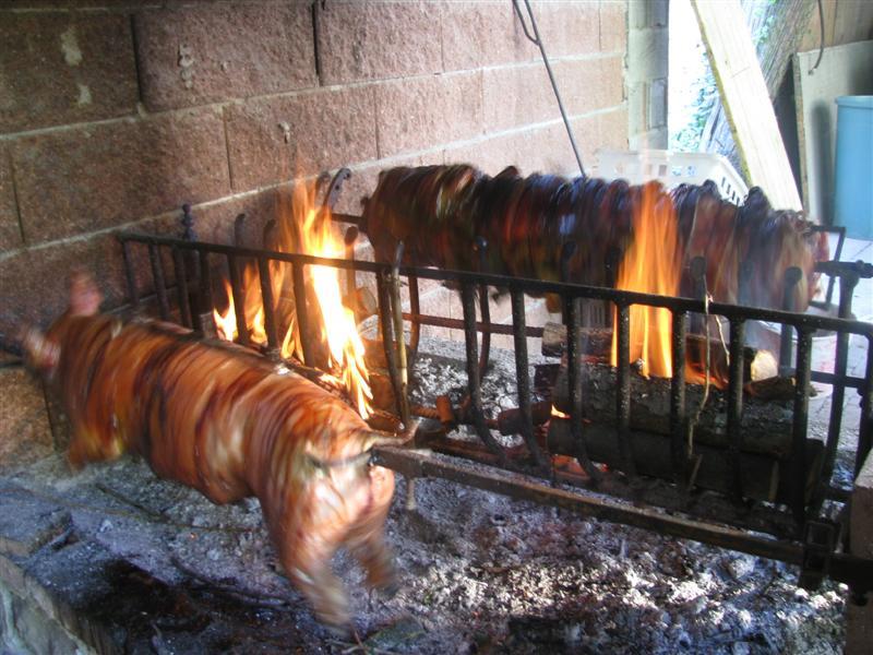 Maialino e porchetta in cottura su spiedo