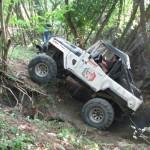 jeep4 (Medium)