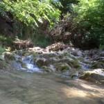natura 030 (Medium)